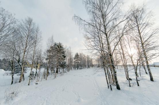 Окрестности Зима 2018 год