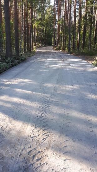 Новая дорога в Солнечном